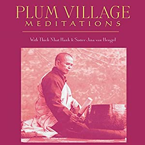 Plum Village Meditations Speech
