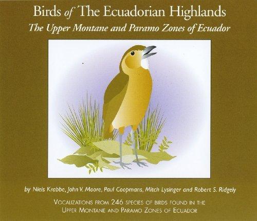 Birds of The Ecuadorian Highlands: Paramo In a popularity Upper Cheap mail order shopping Montane and