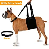 Dog Lift Support Harness Back Sling Helps Rehabilitation Mobility for Elderly Injured Disabled Arthritis Large Breed with Weak Front or Rear Legs - Padded Handle and Adjustable Straps - Black - XL