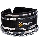 "DMoose Fitness Premium Dip Belt with Chain – 36"" Heavy Duty Steel Chain, Comfort Fit Neoprene, Double Stitching – Maximize your Weightlifting & Bodybuilding Workouts …"