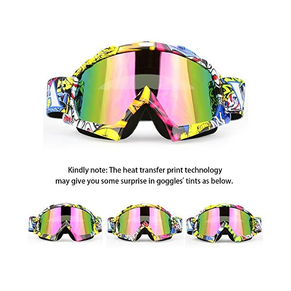 Motocross ATV Ski Snowboard Race MX Goggles Carbon Color Tinted Or Clear Lens