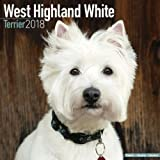 West Highland Terrier Calendar - Dog Breed Calendars - 2017 - 2018 wall Calendars - 16 Month by Avonside