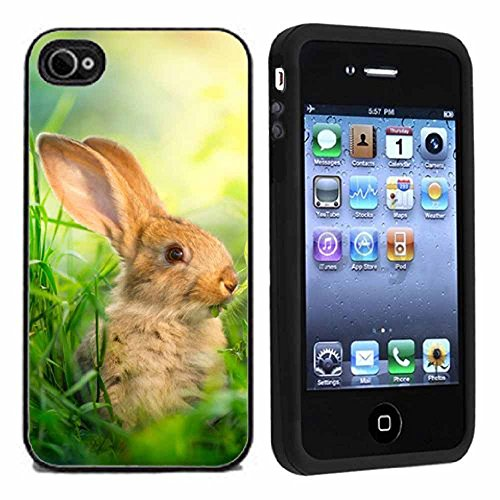 Cute Bunny Up Close Case / Cover For iPhone 4 or 4s by Atomic Market