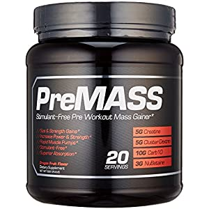 RAW Synergies PRE MASS Gainer Workout Supplement, Pre Workout Muscle Builder & Nitric Oxide Booster – Natural Weight Gainer – Caffeine Free, Effective Intra & Post Muscle Building, Dragon Fruit, 688G