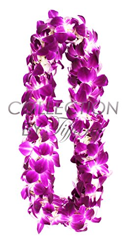 Fresh Graduation Orchid Leis - Double Strand Leis (Natural - Orchid Leis
