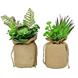 MX Potted Plants Artificial Plants Decorative Fake Flower with Sacks Home Office Decor Green Plants Stand or Hang Up, 1 Set of 2