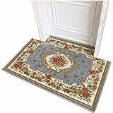 LIUXINDA-DT Modern household carpet, slip proof carpet, door carpet, living room carpet, lobby carpet, 60 X 90CM (23.6 X 35.4),blue