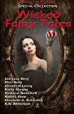 img - for Wicked Fairy Tales: An anthology of bedtime stories for adults! book / textbook / text book