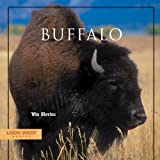img - for Buffalo (Look West Series) book / textbook / text book