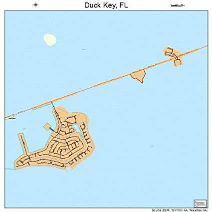 Where Is Duck Key Florida Map.Amazon Com Large Street Road Map Of Duck Key Florida Fl