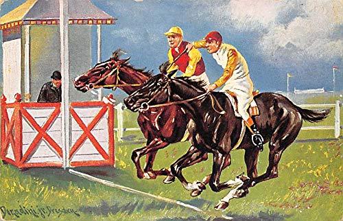 1908 Horse (Horse Racing, Trotters, Postcard Artist Donald Dresden 1908)