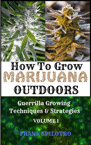 HOW TO GROW MARIJUANA OUTDOORS: Guerrilla Growing Techniques  AND  Strategies