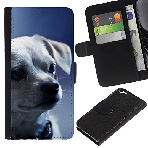 EuroCase - Apple Iphone 6 4.7 - chihuahua puppy serious face dog - Cuir PU Coverture Shell Armure Coque Coq Cas Etui Housse Case Cover