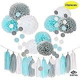 CHOTIKA 23pcs Tissue Flowers Pom Pom Poms Baby Blue White Grey Baby Boy  Shower/Party