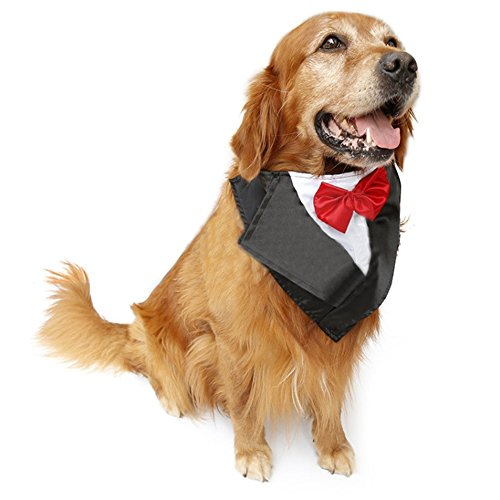 PetFavorites Large Dog Tuxedo Costume - Cat Wedding Bandana Collar with Bow Tie for Halloween - Golden Retriever Sheepdog Clothes Outfits Accessories, Adjustable and Handmade (Red, 22.5 to 26-Inch) -
