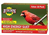 Global Harvest Foods 12770 Food Bird Suet Hi-Energy (10 Pack)