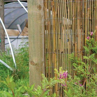 Caña de bambú protector de 4 m x 2 m: Amazon.es: Jardín