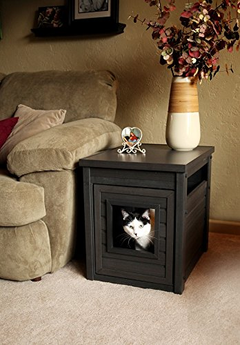 Litter Box Furniture End Table