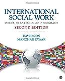 International Social Work: Issues, Strategies, and Programs