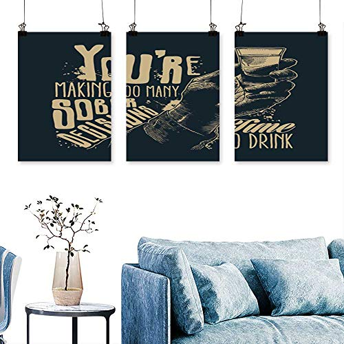(SCOCICI1588 3pcs Triptych Design t Shirt You re mak Too m y Sober Decisions time to Drink Male h a to Hang for Living Room No Frame 16 INCH X)