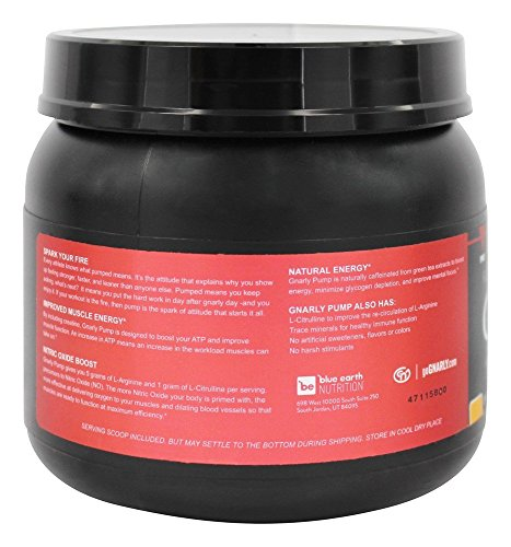Gnarly Pump Pre-Workout Supplement || All Natural Nitric Oxide Booster (Orange Mango)