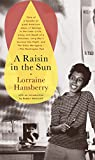 img - for A Raisin in the Sun book / textbook / text book
