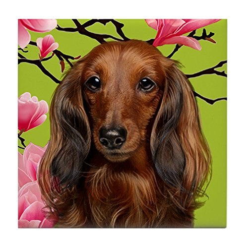 CafePress - Long Haired Dachshund Dog - Tile Coaster, Drink Coaster, Small Trivet