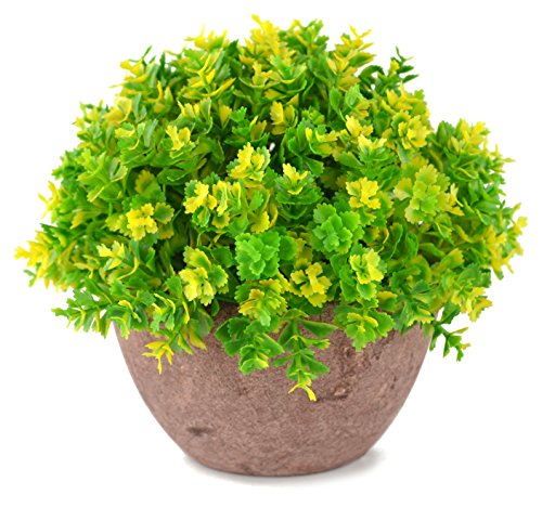 Pot Artificial Yellow (SAMYO 5 Inch Mini Artificial Plant Potted Lifelike Four-leaved Plant in Pot Fake Flower for Home office Decor (Yellow))