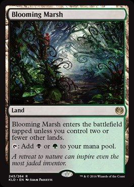 Magic: the Gathering - Blooming Marsh (243/264) - Kaladesh - Foil