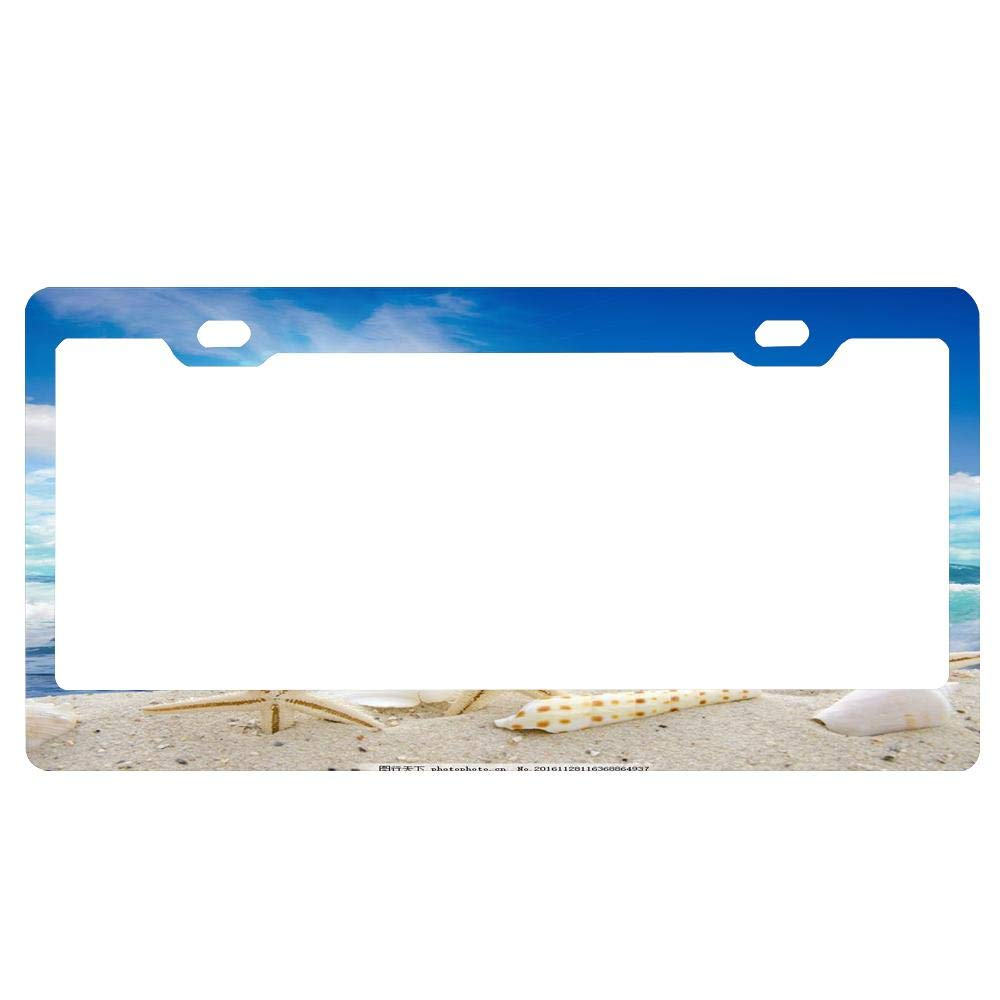 Novelty Car Tag Frame Humor Funny License Plate Cover Holder for US Vehicles 4 Holes and Screws MEVZKTN 12x 6 Tag Holder Black License Plate Frame