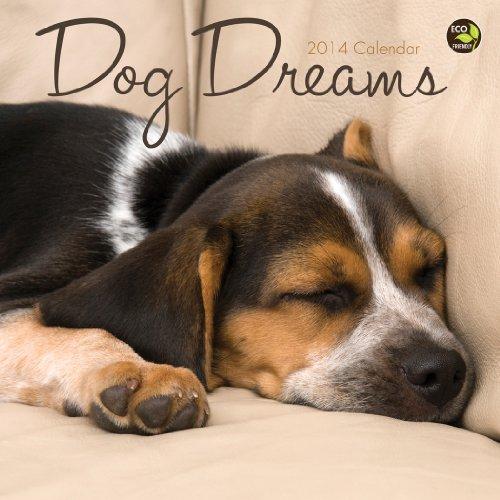 Dog 2014 Mini Calendar - 2014 Dog Dreams Mini Calendar