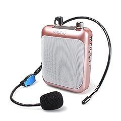 Voice Amplifier C01