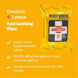 Everyone Hand Sanitizing Wipes: Coconut and