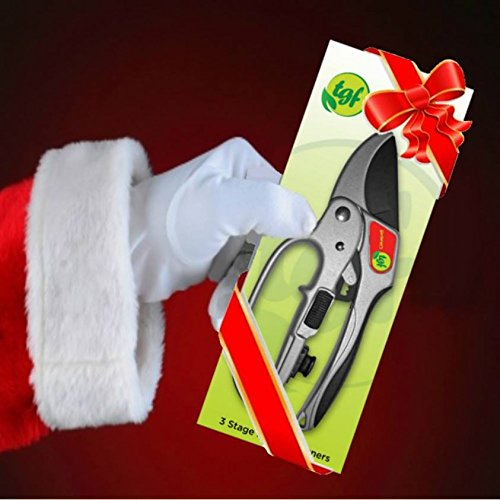 Review Pruners, Ratchet Pruning Shears,