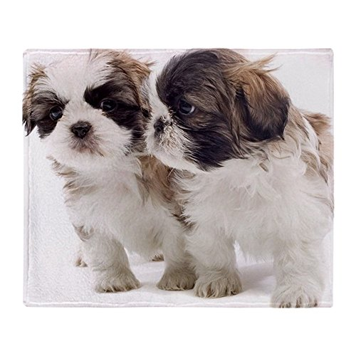 Shih Tzu Fleece (CafePress - Two Shih Tzu Puppies - Soft Fleece Throw Blanket, 50