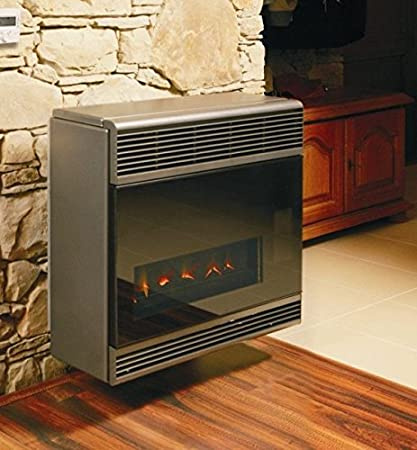 Convector Calentador Estufa de Gas (Natural/propano/butano) Beta 4 Comfort: Amazon.es: Hogar