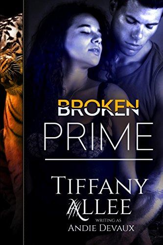 broken-prime-prime-series-book-1