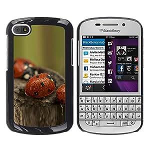 TopCaseStore / la caja del caucho duro de la cubierta de protección de la piel - bozhi korovki kapli boke - BlackBerry Q10