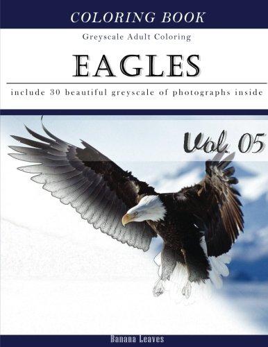 eagle coloring book - 2