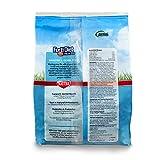 Kaytee Forti Diet Pro Health Hamster Food, 3-Pound
