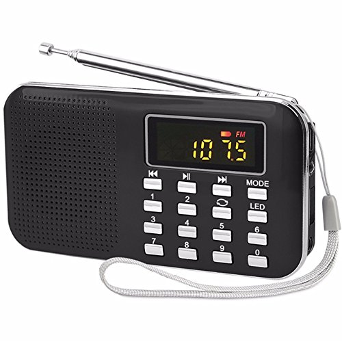 Black Portable Rechargeable Electronic Audio Bible Player 8G NIV Version with Praise Poetry and Sermon by Jomohoon