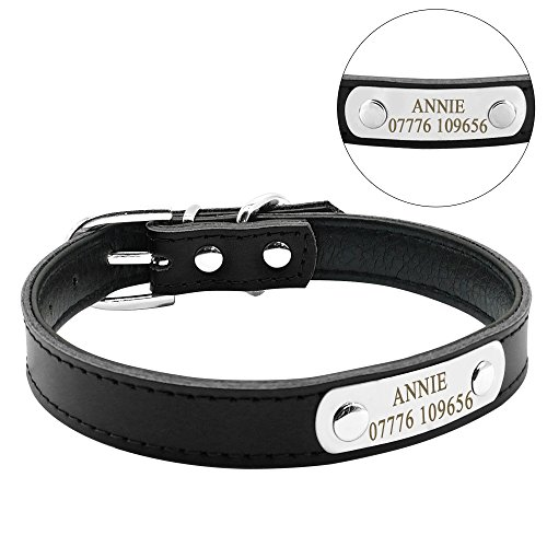 Didog Adjustable Leather Padded Custom Dog Collar with Engraved Nameplate,Fit Cats and Small Medium Dogs,Black,S Size