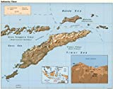 Historic Map Map: 1999 Indonesia, Timor|Indonesia|Timor Island