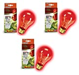 night heat lamp bulb - Zilla Night Red Incandescent Heat Bulb, 100-Watt (3 Pack)