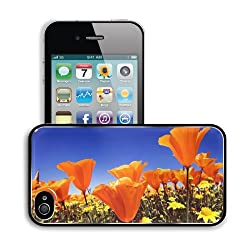Flowers Bright Orange Poppies Field Apple iPhone 4 / 4S Snap Cover