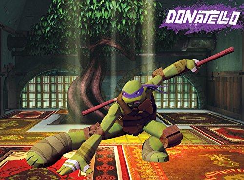 Edge Home Products Teenage Mutant Ninja Turtles Canvas Wall Art, 10 by 13.5-Inch, Donatello - Edge Photo