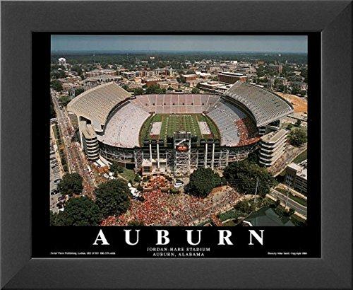 Hare Framed Print (Auburn University Jordan-Hare Stadium NCAA Sports Framed Art Print 10 x 12in)