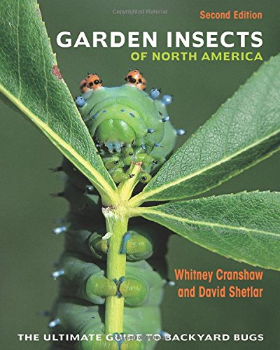 """This second edition of Garden Insects of North America solidifies its place as the most comprehensive guide to the common insects, mites, and other """"bugs"""" found in the backyards and gardens of the United States and Canada. Featuring 3,300 full-col..."""