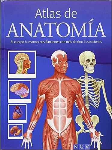 Atlas De Anatomía: Amazon.es: Michael Schuler, Werner Waldmann: Libros