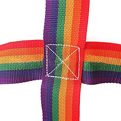 Eilane Outdoor Rainbow Ribbon Net, Sturdy Durable Safe Children's Athletic Physical Training Climbing Net Daily Sports and Entertainment: Home & Kitchen